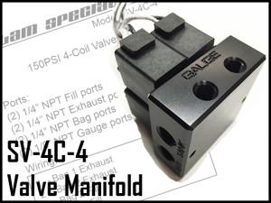 SV4C_manifold_main